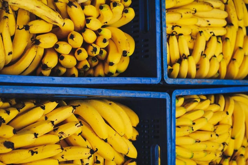 Are bananas good for singers